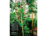 Magazin M97 Gutmacher 08 2